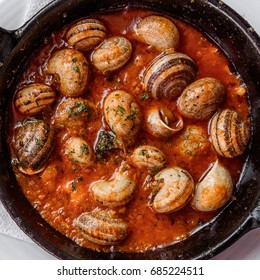 Close up of traditional spanish tapas - the boiled snails in tomato sauce with garlic and chili in black iron pan