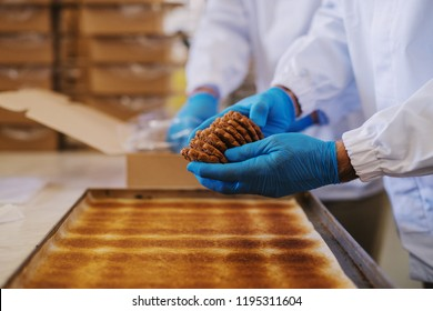 Close up of tray full of fresh baked cookies in food factory. Blurred picture of two male employees in sterile clothes packing cookies in background.