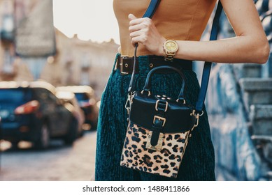 Close up of trendy woman`s autumn outfit: golden wrist watch, faux leather leopard printed box bag. Copy, empty space for text