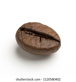 close up of two dark roasted fair trade coffee beans on a white background