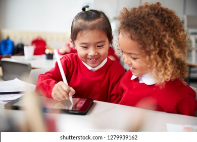 Close up of two kindergarten schoolgirls wearing school uniforms, sitting at a desk in a classroom using a tablet computer and stylus, looking at the screen and smiling