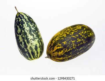 Close up of two  winter gourd ,ash gourd, fig leaf gourd ,malabar gourd , cucurbita  green melon, pumpkin vegetables isolated on white  background