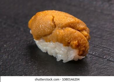 close up of uni nigiri sushi