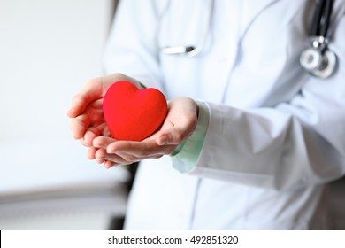 Close up of unknown female doctor with stethoscope holding heart near the window in hospital