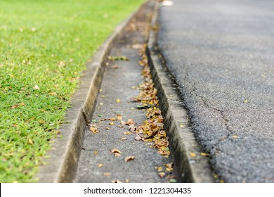 close up uo groove between grass and asphalt