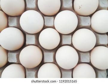Close up. Chicken eggs in containers