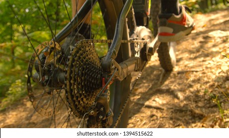 CLOSE UP, DOF: Detailed view of the rear wheel and brakes of a mountain bicycle as the young man pedals through the sunlit woods. Following a male cyclist riding his ebike along the forest trail.