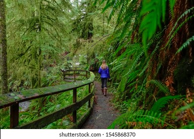 CLOSE UP, DOF: Unrecognizable female photographer treks along a scenic boardwalk deep in the lush Hoh Rainforest. Woman on trekking trip in Olympic National Park walks along an empty hiking trail.