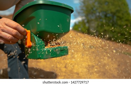 CLOSE UP, DOF: Unrecognizable person sowing grass seeds with a green plastic device. Gardener sowing small vegetable seeds on a sunny spring afternoon. Farmer sowing grain in a fertile patch of soil