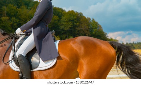CLOSE UP: Female English rider in a blue frock gallops on manege on horseback. Young woman cantering on a brown stallion during a dressage competition. Elegant girl training her muscular horse.