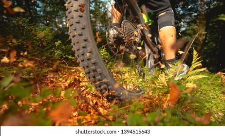 CLOSE UP, LOW ANGLE: Sun shines on a part of forest trail as the unrecognizable male cross country cyclist speeds past the camera. Energetic young man having fun riding his e-bike through the woods.