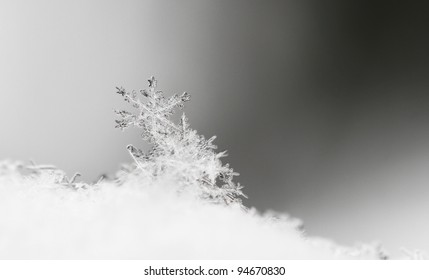 Close up, macro of snow with crystals in good view
