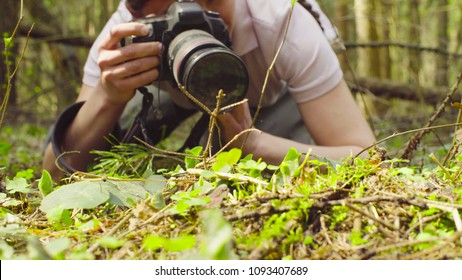 Close up. The woman ecologist making photos of the plants in the forest.