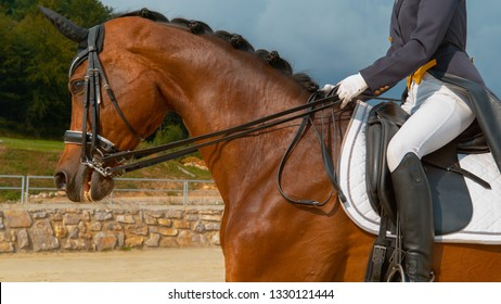 CLOSE UP: Young Caucasian woman cantering on a brown gelding during a dressage competition. Unrecognizable English rider in a blue frock gallops on her beautiful horse during an dressage exhibition.