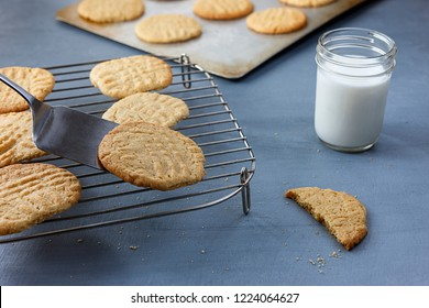 A close up of using a spatula to place a peanut butter cookie on a cookie rack.