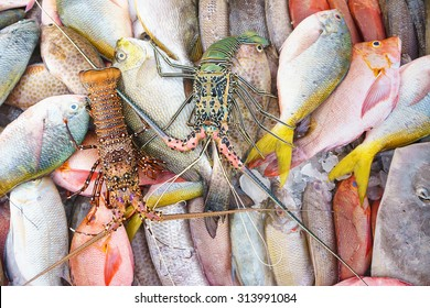 Close up of a variety of colorful fresh lobster and fish on display at fishmarket.