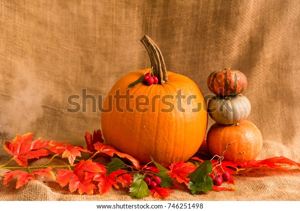 Close up various pumkins and red leaves