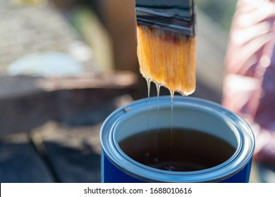 Close up of varnish dripping of paint brush. Brush with lacquer over can, nobody