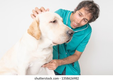 close up of veterinarian man happy and smiling with labrador dog in the consultation on isolated white  background
