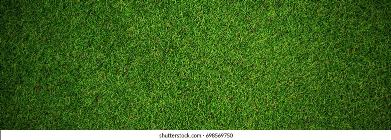 Close up view of astro turf in crossfit gym
