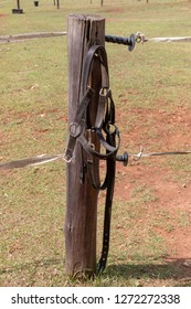 A close up view of a black horse holter hanging up on a fence pole outside a horse paddock.