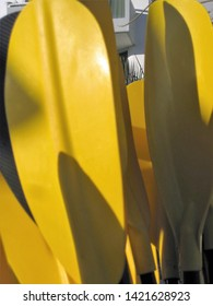 Close up view of brilliant yellow plastic boat oars grouped on the pier with sunlight and shadows dancing across them.