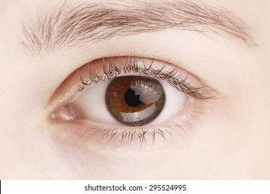Close up view of a brown woman eye - no make up on