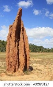A close up view of a cathedral termite mound