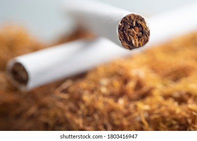 Close up view of the cigarettes and tobacco heap. Smoking rates have generally declined in the developed world, but continue to rise in some developing nations.