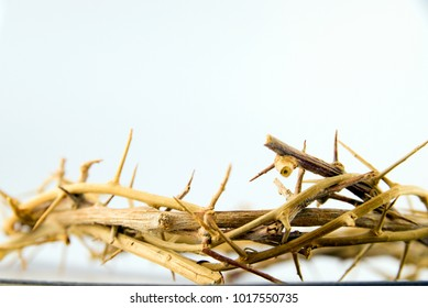Close up view of Crown of thorns on white background. Concept for faith, spirituality and religion.
