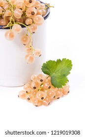 Close up view of cup with white currant berry isolated on white background. A white cup with currant berry and small bunch of white currant with small green leaf of currant bush in front of cup.