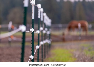 Close view at electrical fence surrounding pasture perimeter at a local farm