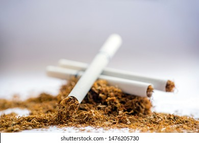 Close up view of the filtered cigarettes on stack of tobacco. It is a narrow cylinder containing psychoactive material, usually tobacco, that is rolled into thin paper for smoking.