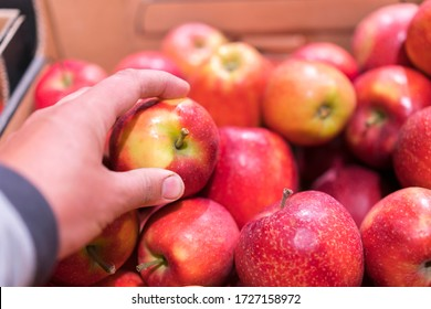 Close up view of fruits shelf in supermarket. hand taking red apples in the store. male hand taking fruit from a shelf. man holds one selected apple in a store or market. Juicy and fresh fruits