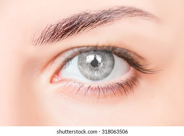 Close up view of gray girl eye