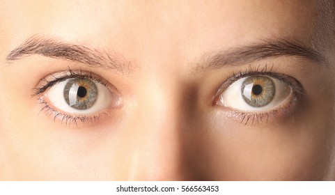 Close up view of a green woman eyes looking at camera