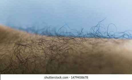 Close up view of hairy legs of a man. Leg hairs show man masculinity.