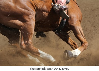 A close up view of a horse running.