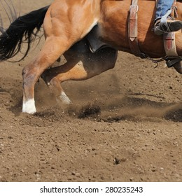 A close up view of a horse running in dirt.