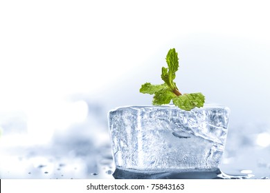 Close up view of ice cube with piece of mint on color back