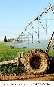 A close up view of a lateral sprinkler system in a farm field