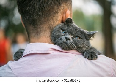 Close up view of man holding a cat