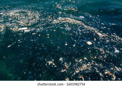 Close view to marine pollution.