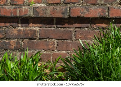Close view of old brick retaining wall with liriope border, horizontal aspect