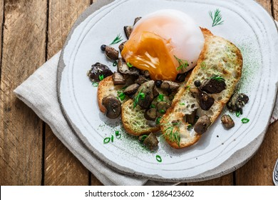 Close view of poached egg with wild mushrooms and toasted bread