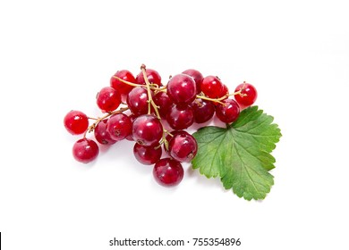 Close up view of red currant berry isolated on white background. A bunch of red currant with small green leaf of red currant bush.