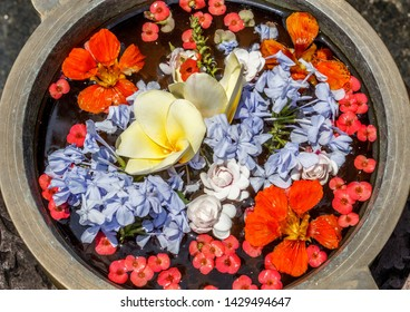 close up view of red, yellow and blue  colored petals of different flowers decorated in a metal water bowl offers romantic feel 24 botanical garden