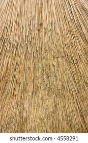 Close up view of reed thatch