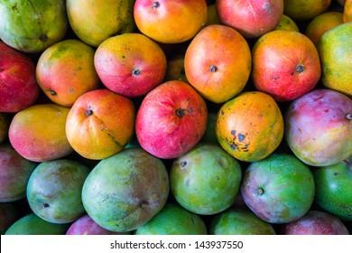 Close up view of ripe Florida mangoes.