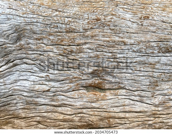 a close up view of rippled wood grain tree bark natural pattern texture